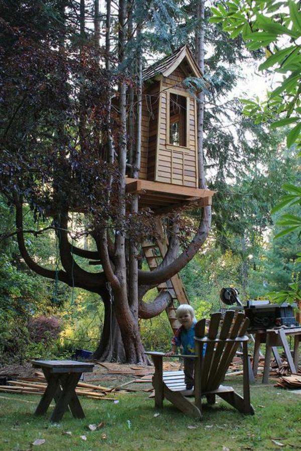 cabanes-dans-les-arbres-cabane-bâtie-sur-un-arbre-magnifique