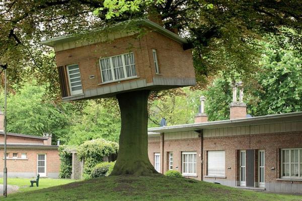 cabanes-dans-les-arbres-cabane-inclinée