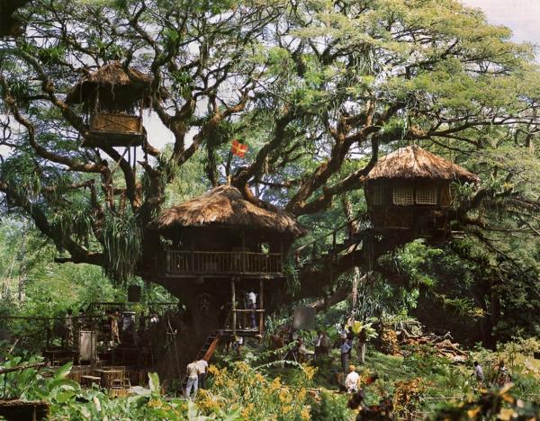 cabanes-dans-les-arbres-cabanes-à-tobago