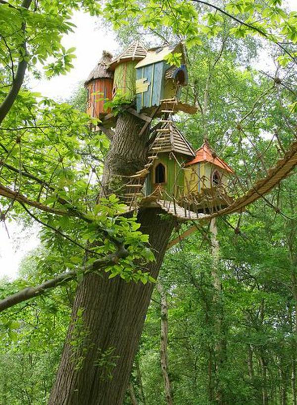 cabanes-dans-les-arbres-cabanes-uniques-juchées-sur-un-grand-arbre