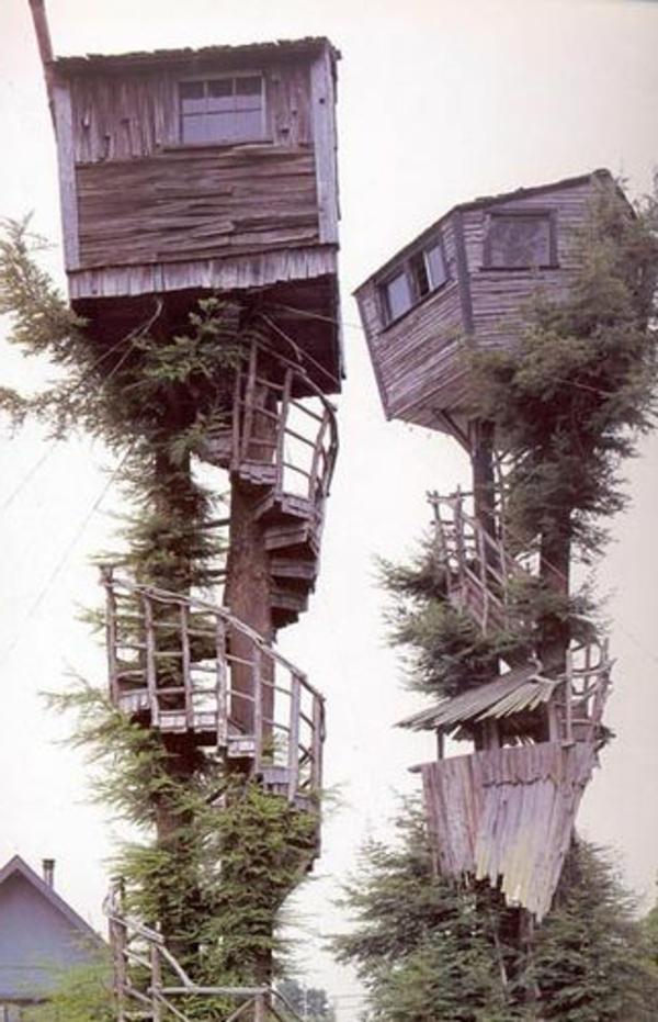 cabanes-dans-les-arbres-des-gîtes-absurdes