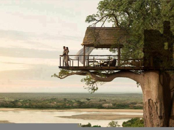 constructeur maison dans les arbres bi77 montrealeast. Black Bedroom Furniture Sets. Home Design Ideas