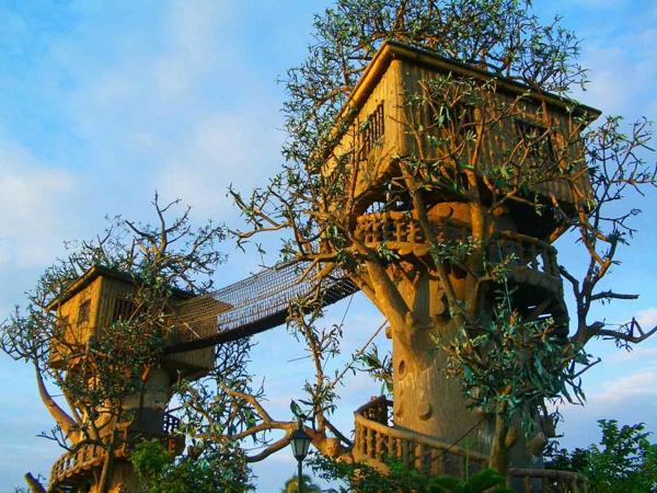 cabanes-dans-les-arbres-deux-cabanes-liées-avec-un-pont