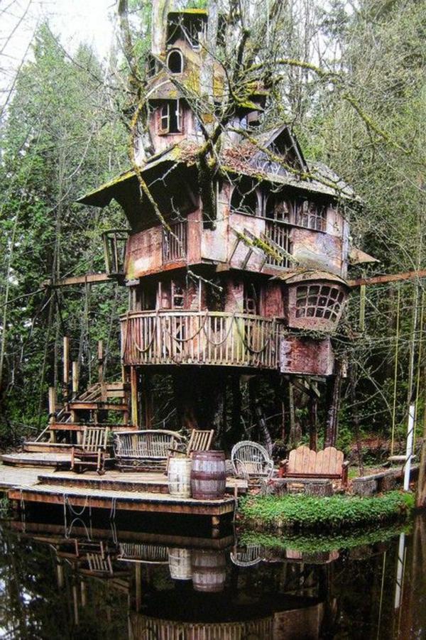 cabanes-dans-les-arbres-et-des-branches-revêtues-de-mousse