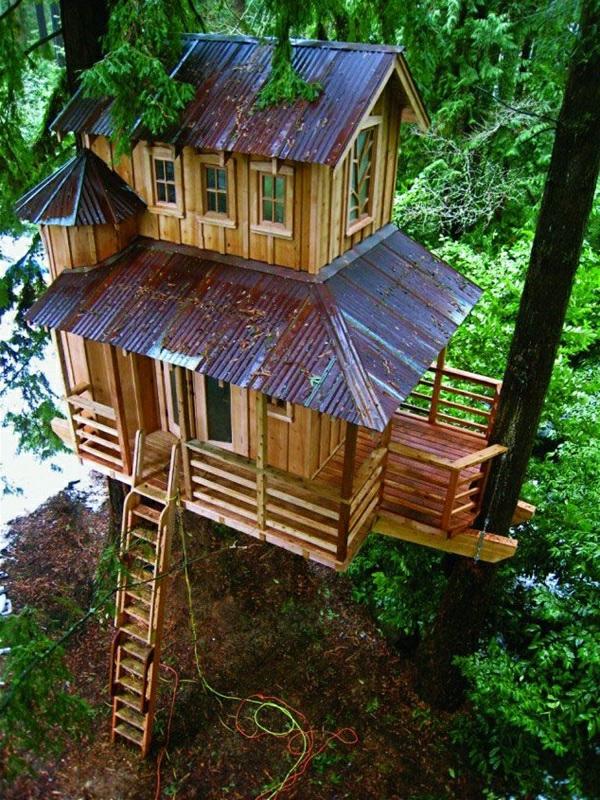 cabanes-dans-les-arbres-idées-créatives