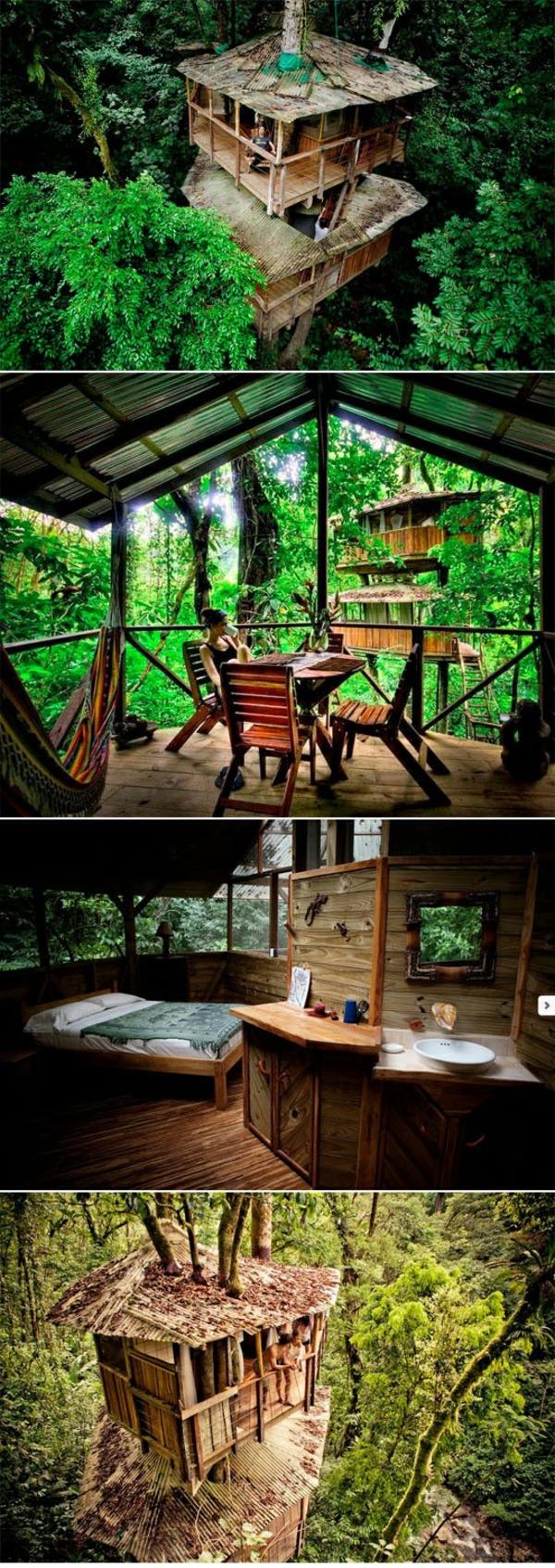 cabanes-dans-les-arbres-idées-d'architecture-créative