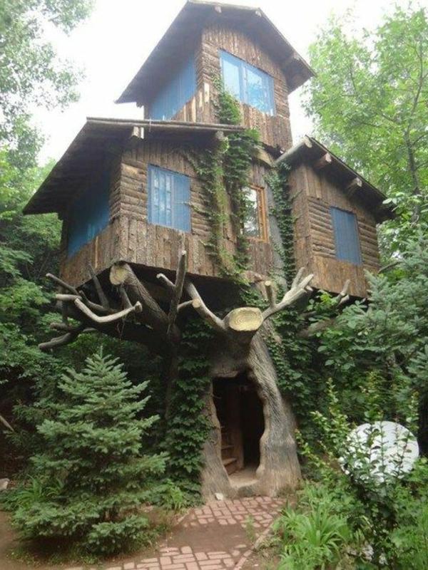cabanes-dans-les-arbres-idées-intéressantes-d'architecture