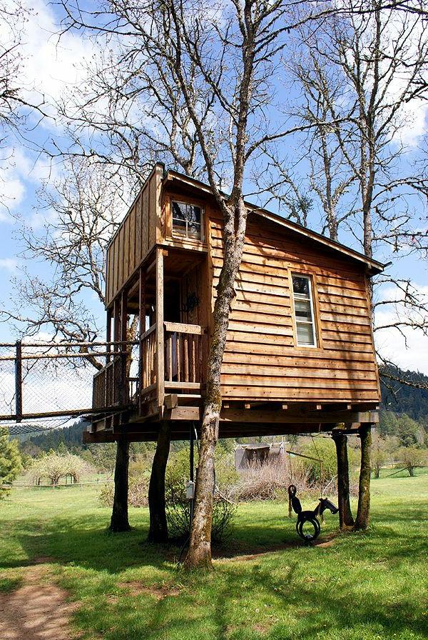 Cabane En Bois Dans Les Arbres : cabanes dans les arbres, une maison en bois sur les arbres