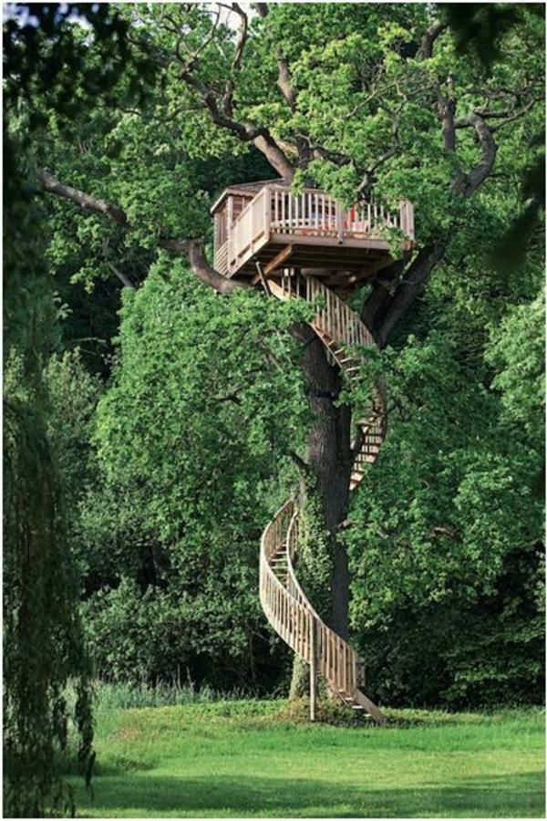 cabanes-dans-les-arbres-maison-avec-escalier