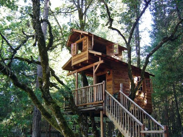 cabanes-dans-les-arbres-maison-d'hôtes