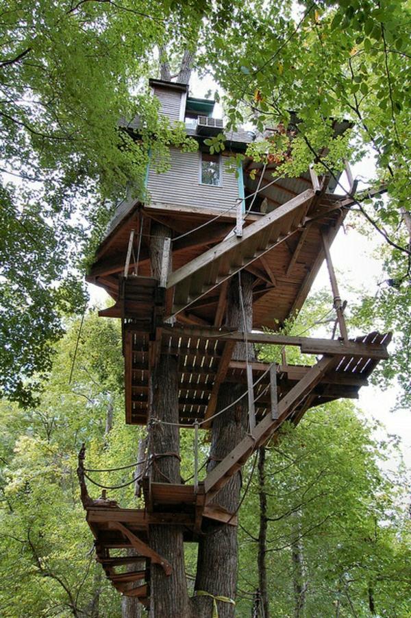 cabanes-dans-les-arbres-maisons-bizarres