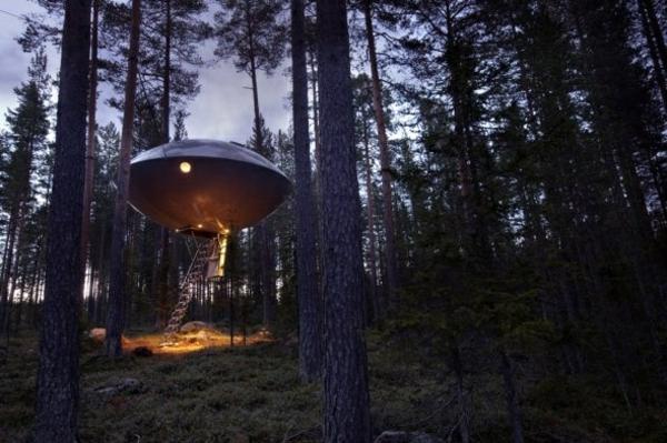 cabanes-dans-les-arbres-objet-non-identifié