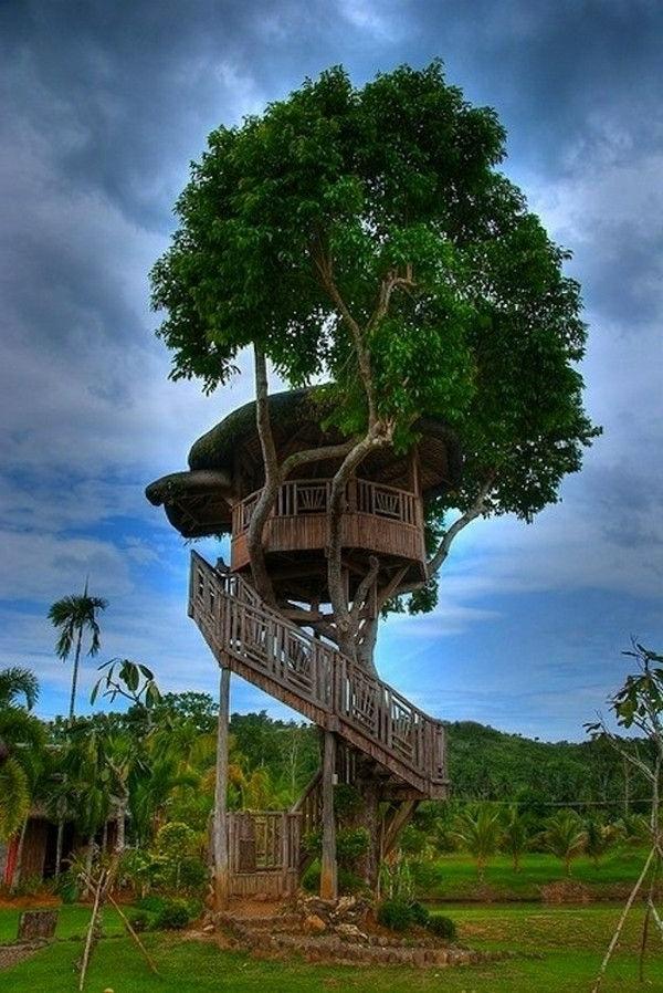 cabanes-dans-les-arbres-petite-maison-ronde