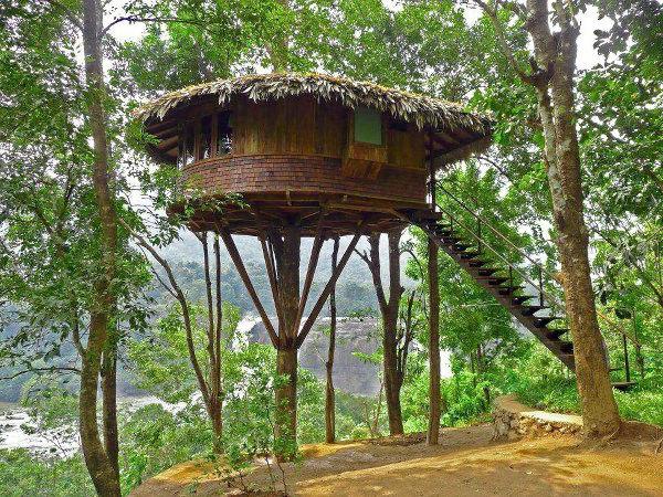 cabanes-dans-les-arbres-toiture-en-feuilles