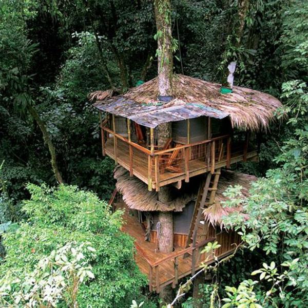 cabanes-dans-les-arbres-toitures-en-paille