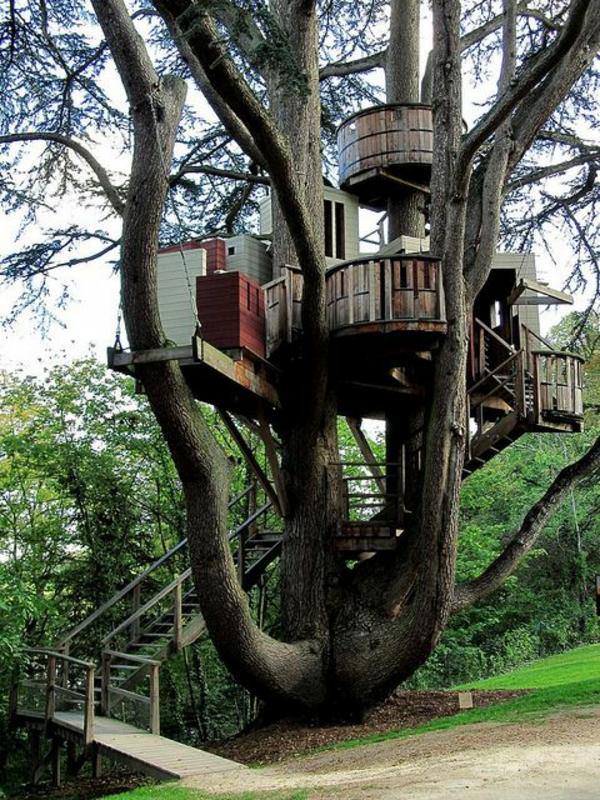 cabanes-dans-les-arbres-un-gîte-spectaculaire