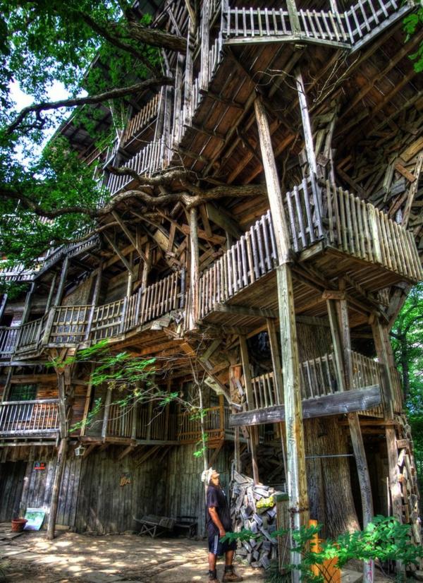cabanes-dans-les-arbres-un-grand-hôtel-extraordinaire