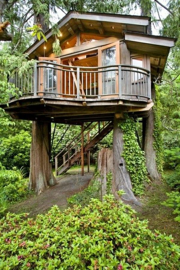 cabanes-dans-les-arbres-une-cabane-dans-une-forêt-magnifique