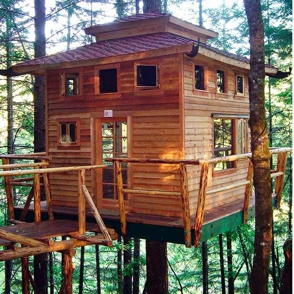 cabanes-dans-les-arbres-une-cabane-et-un-pont-en-bois
