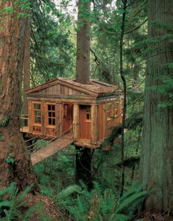 cabanes-dans-les-arbres-une-cabane-fantastique-entre-les-arbres
