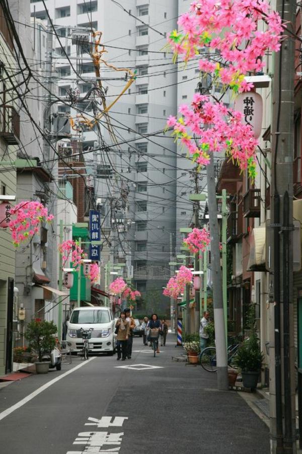 cerisier-japonais-des-branches-fleuries