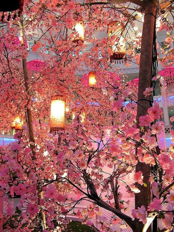 cerisier-japonais-la-fête-du-printemps