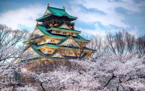 cerisier-japonais-temple-magique