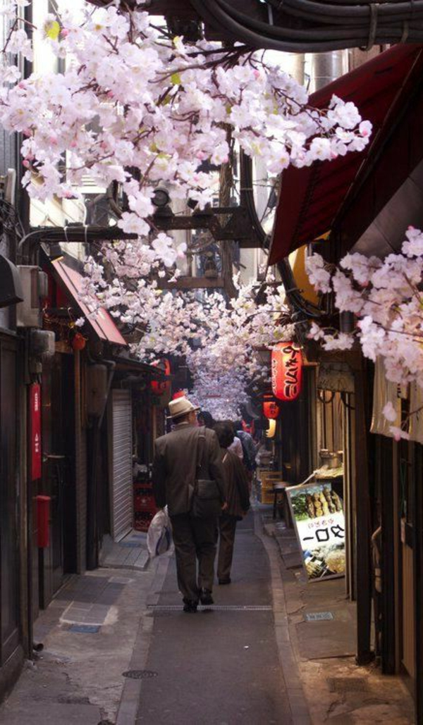 cerisier-japonais-une-rue-japonaise