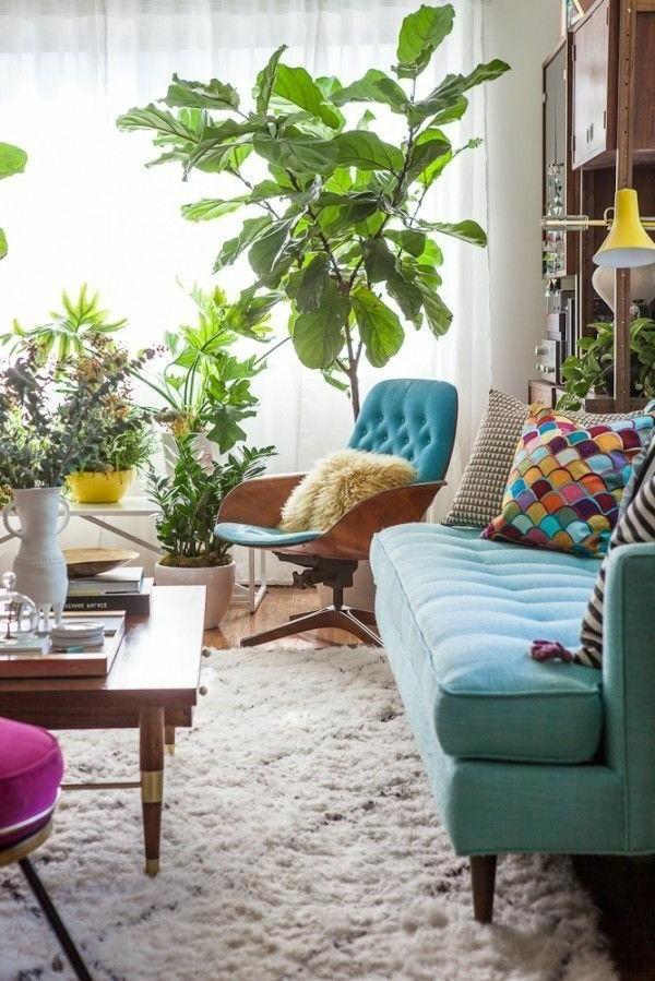 chambre-salle-de-séjour-chaise-table-sofa-plante-verte-de-intérieur