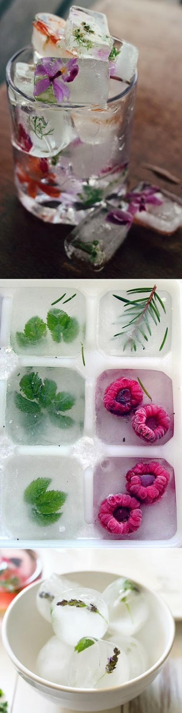 comment-faire-soi-même-morceaux-de-glace-avec-fleurs-dedans