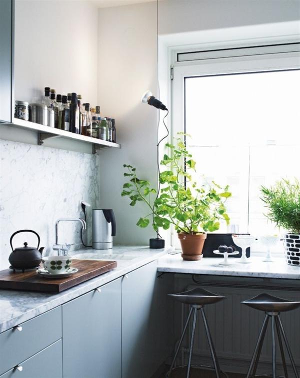 cuisine-ambiance-joviviale-nature-plante-verte-d-intérieur-plantes-lavabo