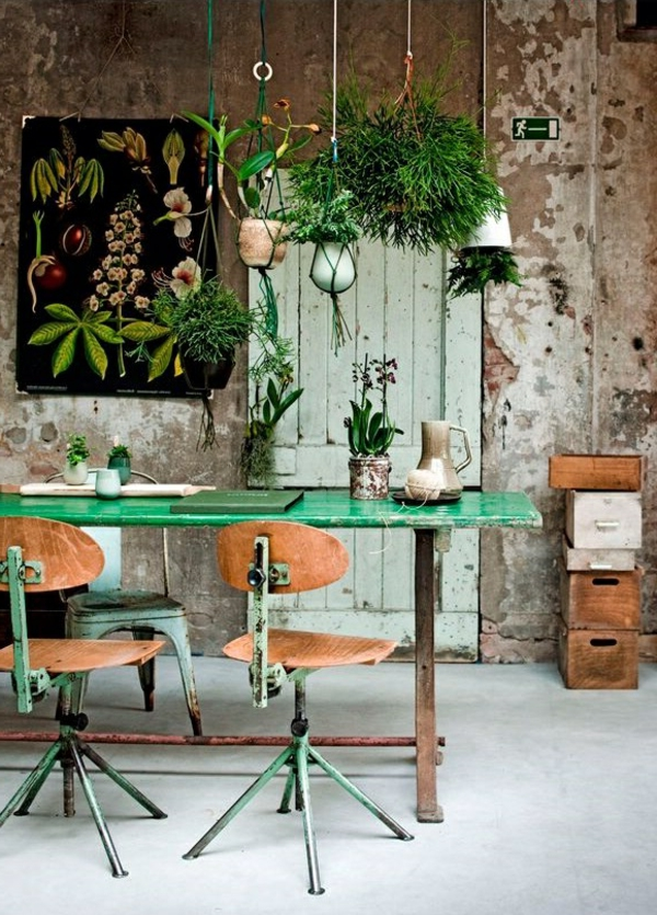 déco-jolie-ruines-moderne-plantes-vertes-plante