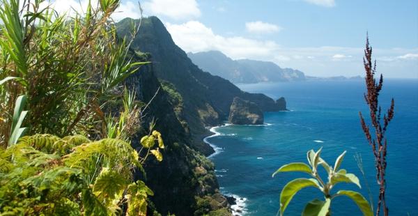 découvrir-madéira-jolie-paysages-nature-verte-océan-resized