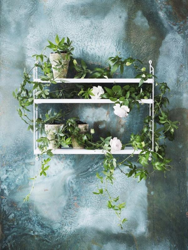 détails-plantes-intéressante-décoration-chambre