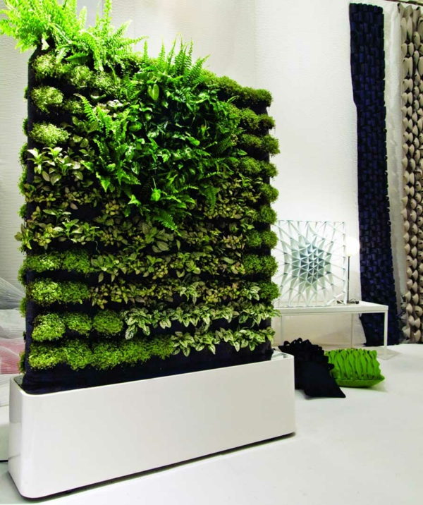 decoration-classy-image-of-accessories-for-living-room-decoration-using-indoor-plant-decoration-along-with-living-plant-room-dividers-gorgeous-home-interior-ornament-with-various-indoor-plant-decorati-resized