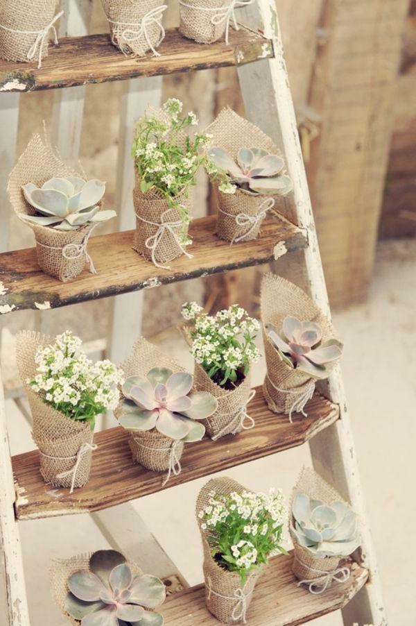 escabeau-avec-des-fleures-plantes-sur-les-escaliers