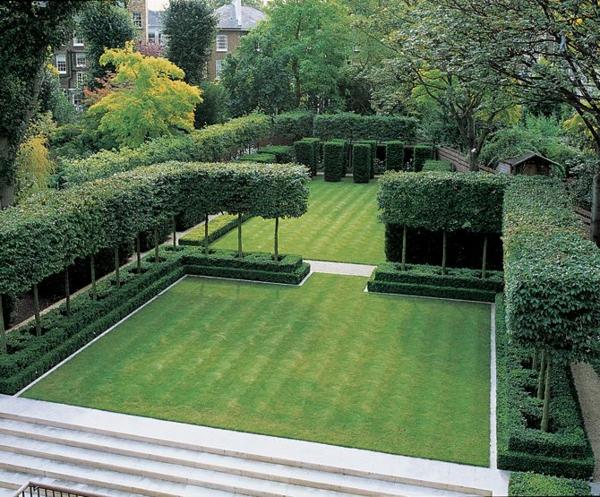 haie-pour-votre-jardin