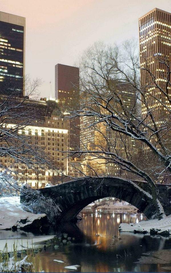 hiver-à-NYC-central-park-appartement-new-yorkais-décoration