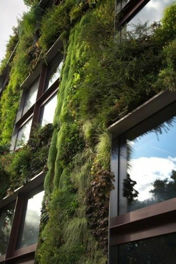 inspiration-organique-grandes-fenetres-maison-futuriste