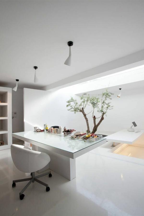 intérieur-organique-arbre-salle-de-séjour