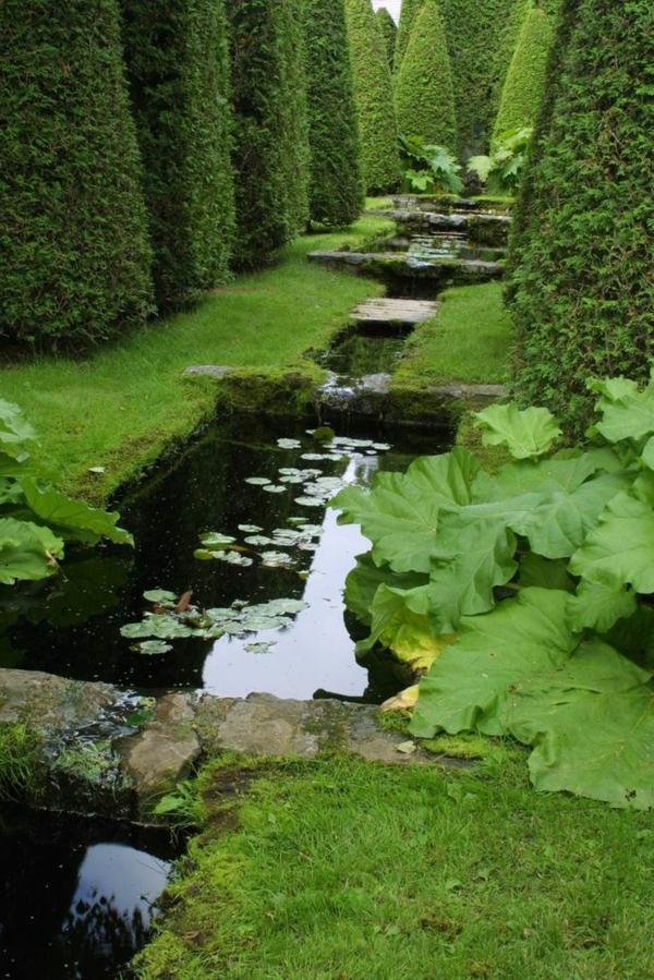 jardin-avec-haie-haute