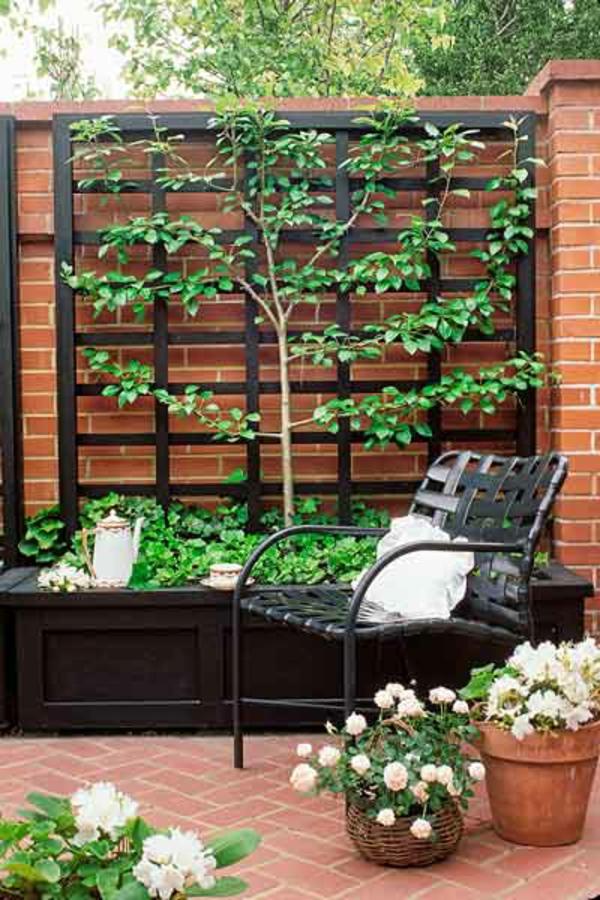 La jardini re avec treillis vous aide r aliser une for Quelles plantes pour un mur vegetal exterieur
