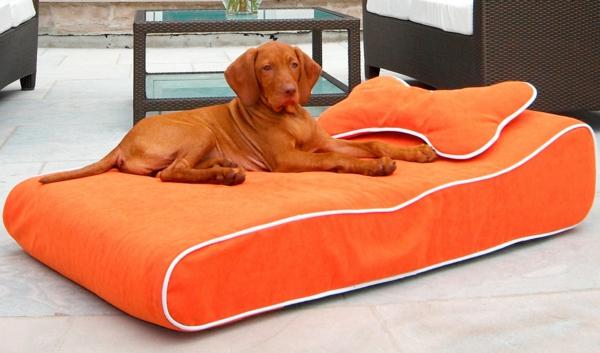 lit-pour-chien-coussin-orange