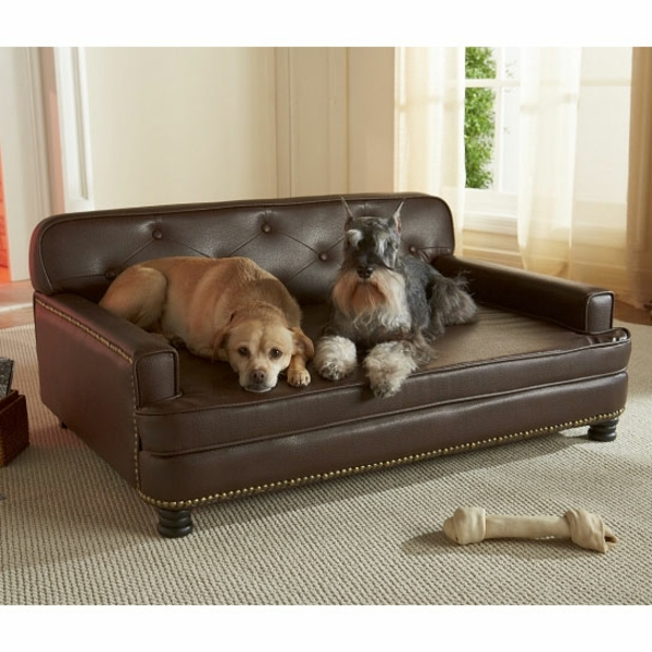 le lit pour chien n cessaire et amusant. Black Bedroom Furniture Sets. Home Design Ideas
