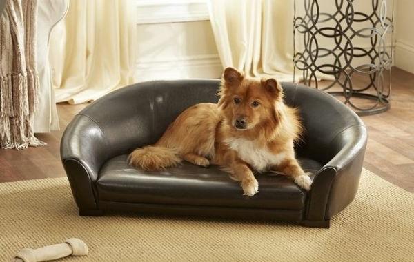 lit-pour-chien-design-luxueux-en-cuir