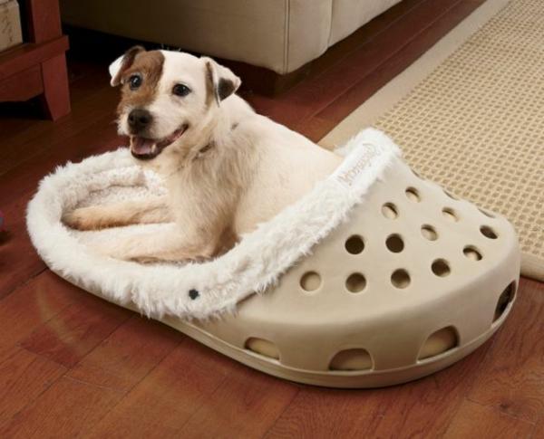 lit-pour-chien-le-lit-chaussure-géante