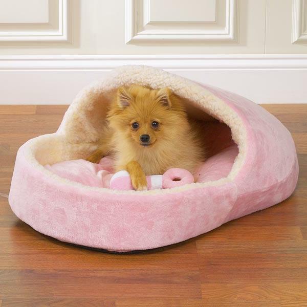 Le lit pour chien n cessaire et amusant - Fabriquer un lit pour chien ...