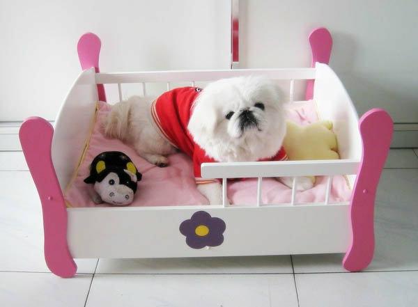lit-pour-chien-lit-adorable-pour-un-chien-mignon