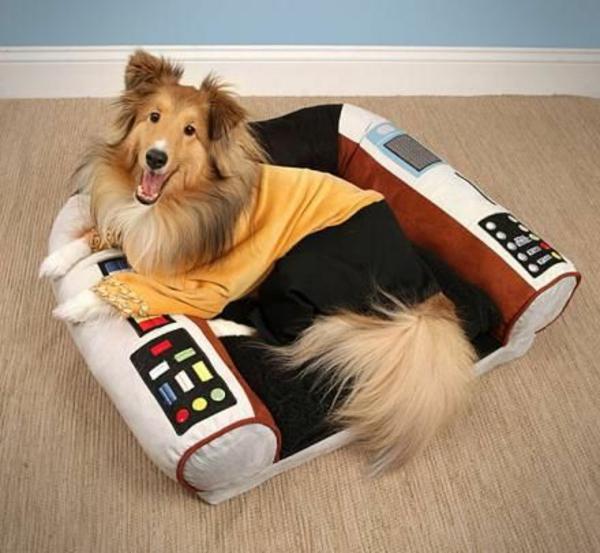 lit-pour-chien-lit-amusant-de-chien
