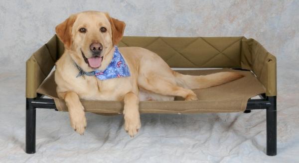 lit pour chiens free produits pour animaux de compagnie lit pour chiens coton tapis de bande. Black Bedroom Furniture Sets. Home Design Ideas
